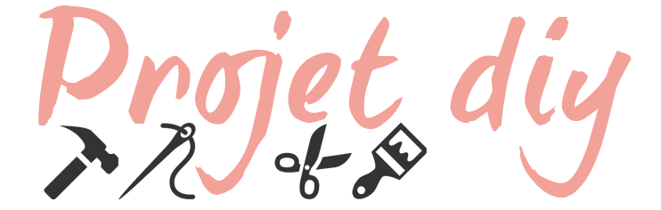 projet-diy-logo-test-72dpi-3-