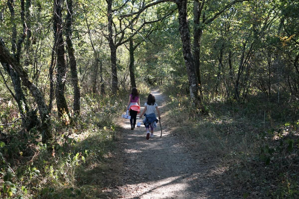 DIY minute! des paniers de récolte pour une promenade en forêt