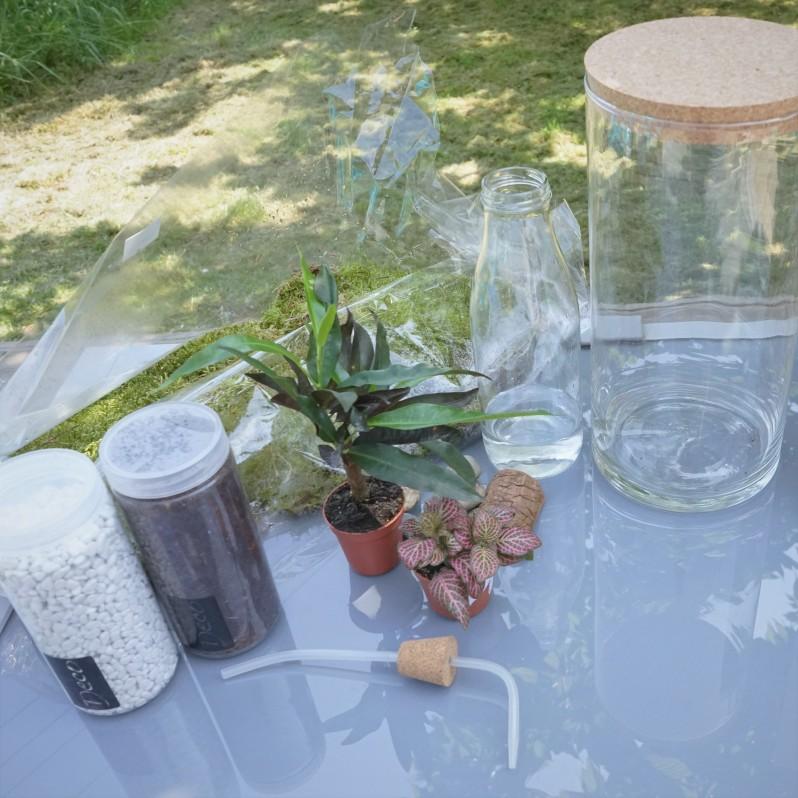 ecosysteme-miniature1