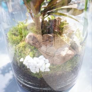ecosysteme-miniature7