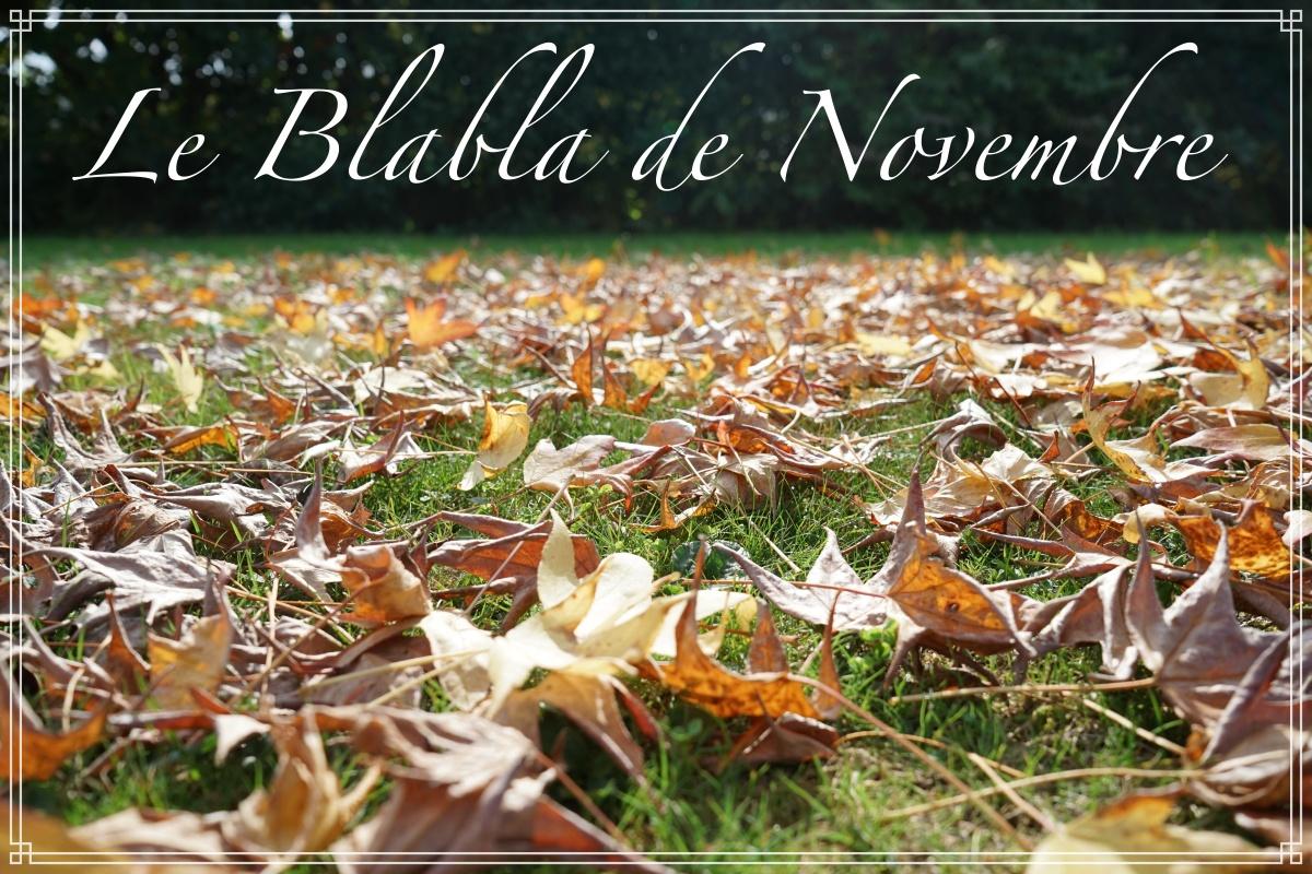 Le blabla de novembre